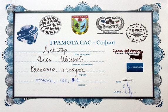 gramota-kavkazka-dexter