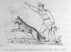 обучение на кавказката