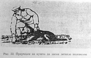 команда легни за куче
