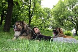 Крикс, Декстър и аз