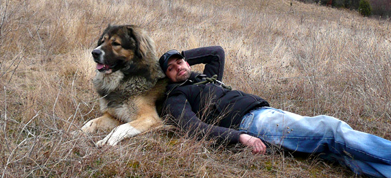 кавказка овчарка - куче пазач - декстър