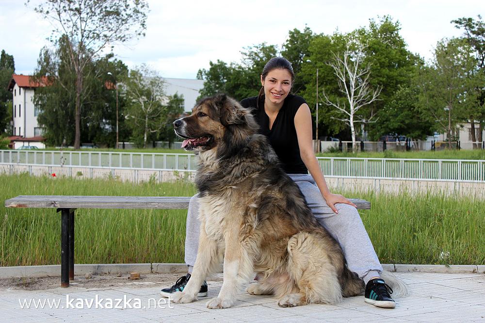 Вероника и кавказката овчарка Декстър
