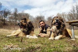 Кавказците Декстър, Крикс и аз